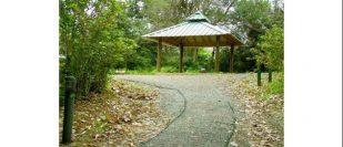 Parque Ecológico Monte del Estado Área de Acampar