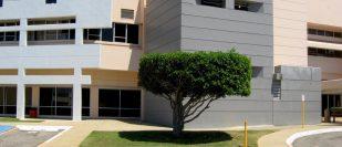 Arecibo Medical Center Inc